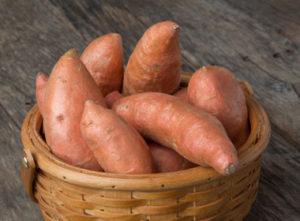 tatlı-patates